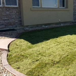 Slice It Landscaping Service - Landscaping: Sod, Shrubbery