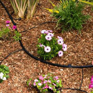 Slice It Landscaping Service - Irrigation: Drip Irrigation, Gardens, Trees & Shrubs